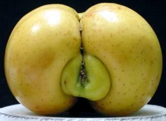 fucking Fruit