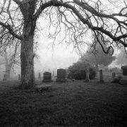cemetery finger fucking